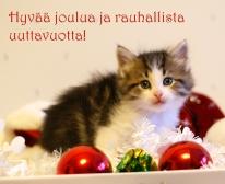 Hyvää joulua ja rauhallista uuttavuotta! Terveiset välittää Dolly.